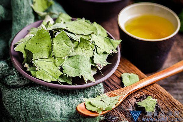 荷叶茶的功效与作用 喝荷叶茶的好处