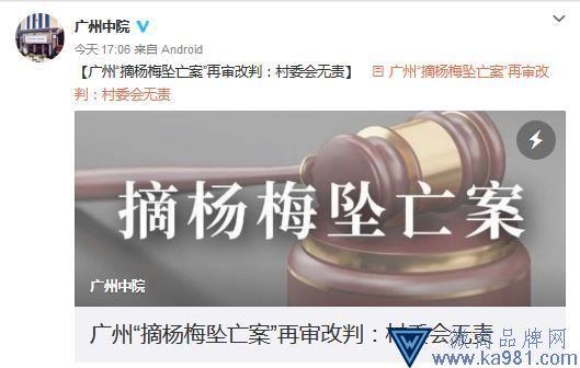 """广州""""村民摘杨梅坠亡案""""再审改判:村委会无责"""