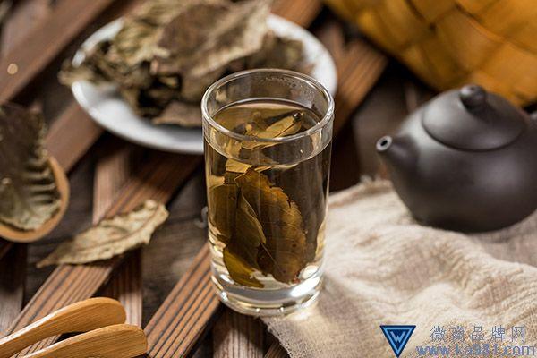 青钱柳茶的功效与作用